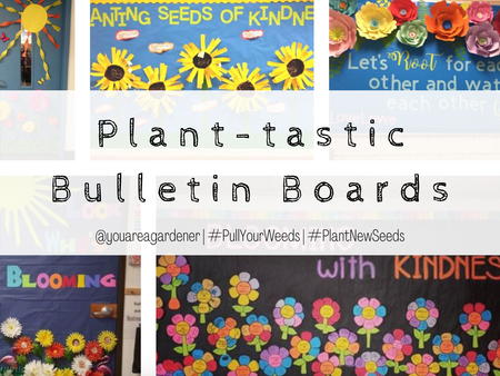 Plant-astic Bulletin Boards!
