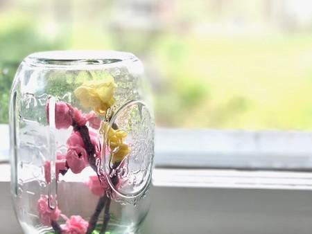 Make Your Own Springtime Terrariums