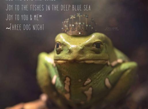 Jeremiah Was A Bullfrog...
