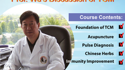 Online Course (Part 23): Interesting TCM & Acupuncture Prof.Wu's Discussion of TCM