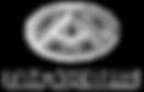maxus-logo3.png