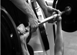 Beginners Guide - Building Muscle
