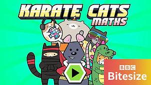 karate-catsp087sbt9-350wlogo.jpg
