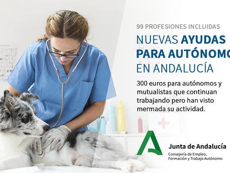 Medidas urgentes complementarias COVID-19 en Andalucía