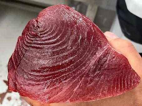Quand le thon de Méditerranée pêché par Côté Fish tombe entre les mains de Florent Pietravalle...