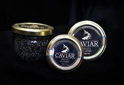 Aquatir black caviar tasting