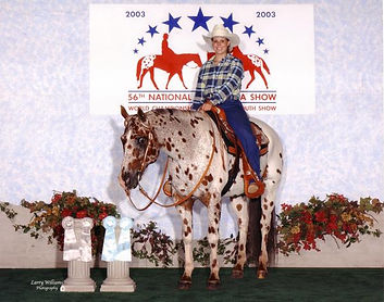 Almighty Budd Double J Performance Horses