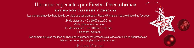 Banner Slider Página Picos2 (5).png