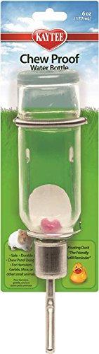 Bebedero de vidrio 6 oz (177ml)