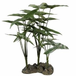 Planta P/Terrario tropical mod. ARROWHEAD ZILLA