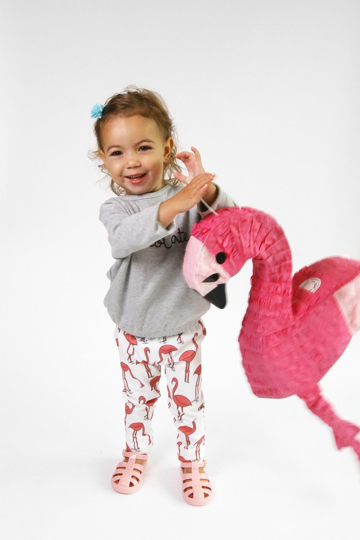 Loana Flamingo.jpg