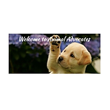 Animal Advocates FL