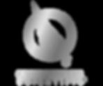 QS logo_big.png