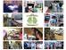 JUHRI's Mobile Clinics take off