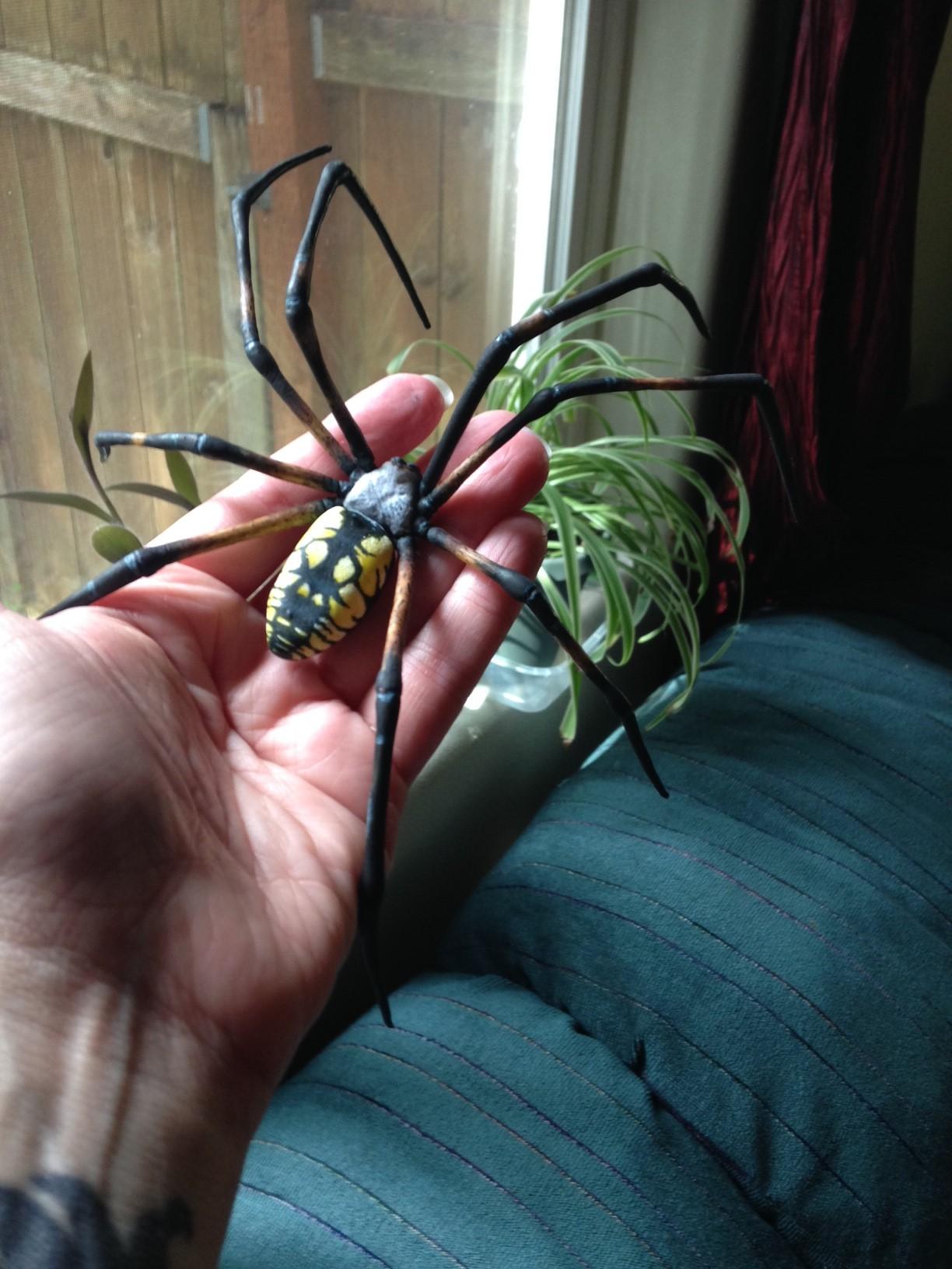 Gumpaste Spider