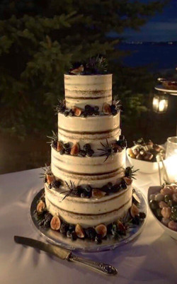 Berry and Fig Semi Naked Cake