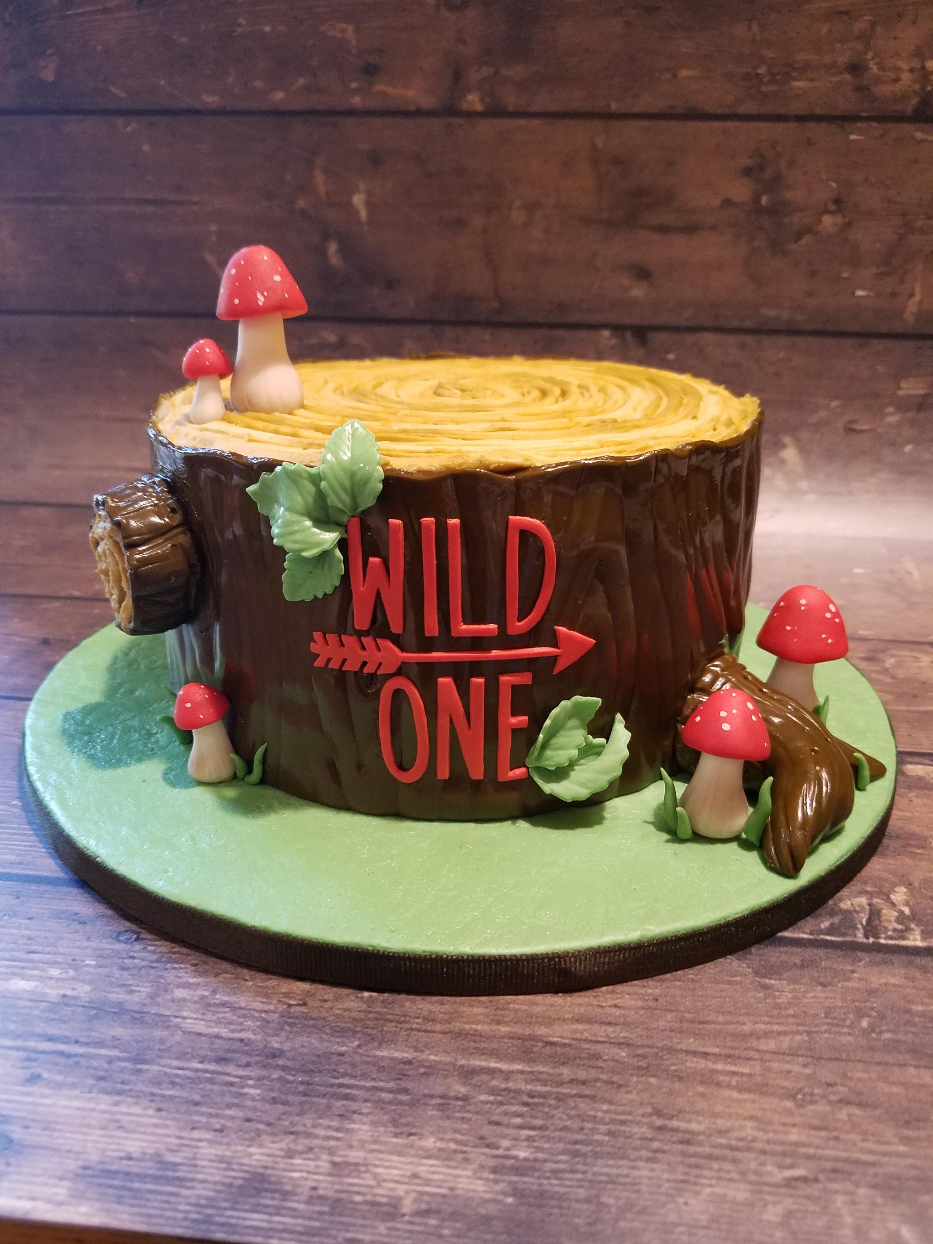 Wild One smash cake