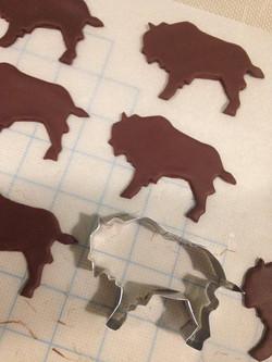 Modeling Chocolate Buffalo's