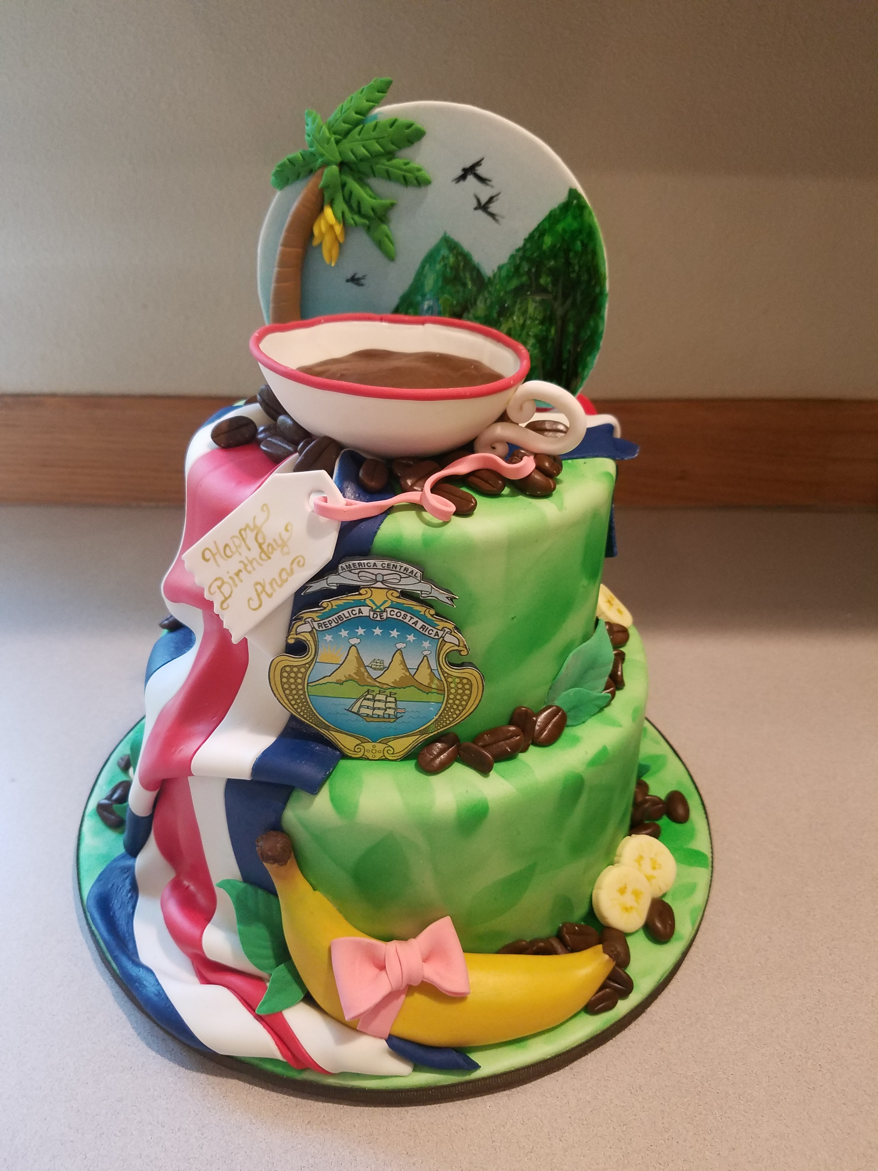 A Costa Rica themed cake