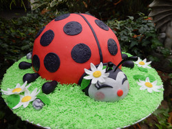 Lady Bug Party!