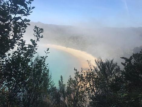 abel tasman national park beach.jpg