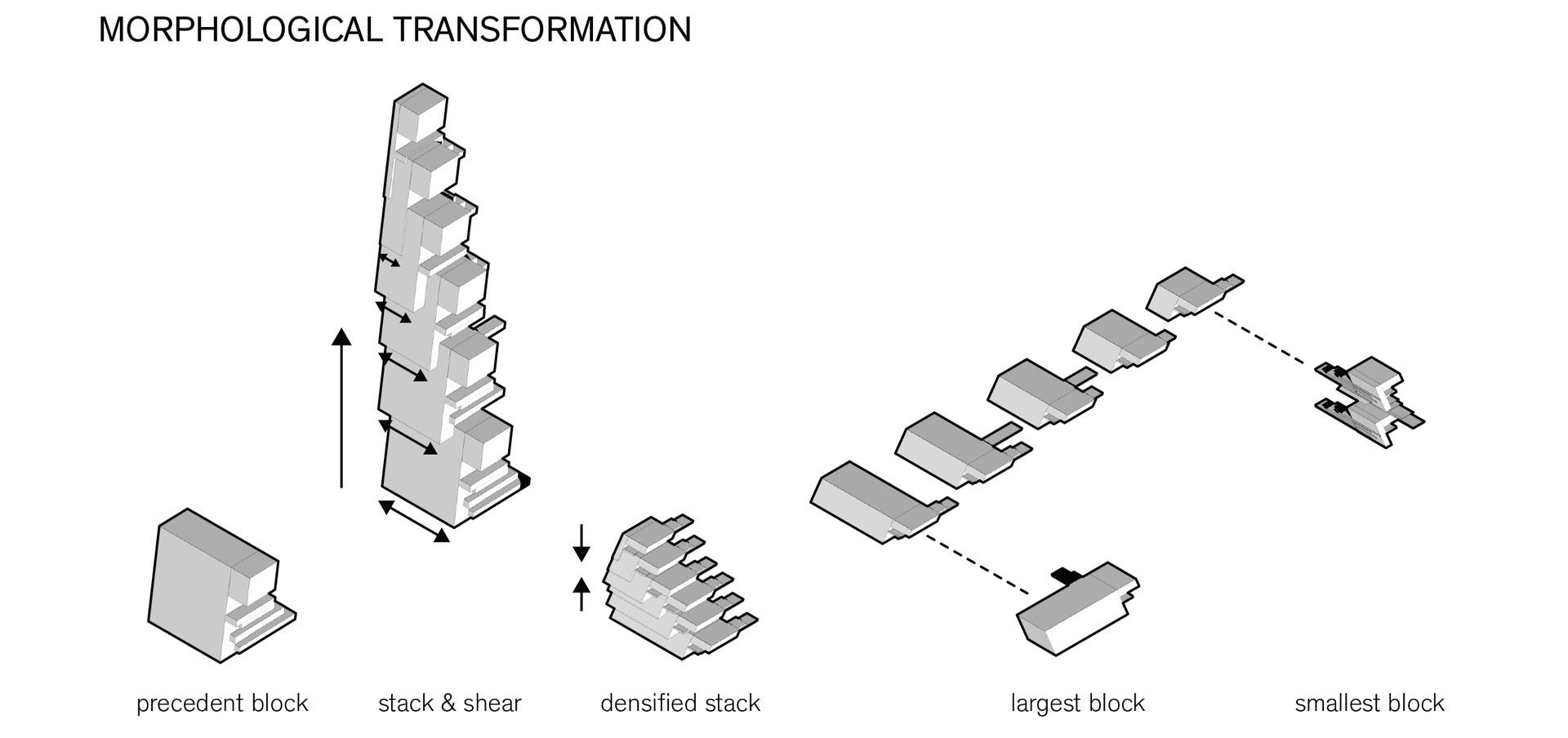 Morphological Transformation