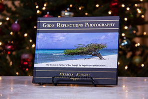 book-christmas-6x4-for-website.jpg