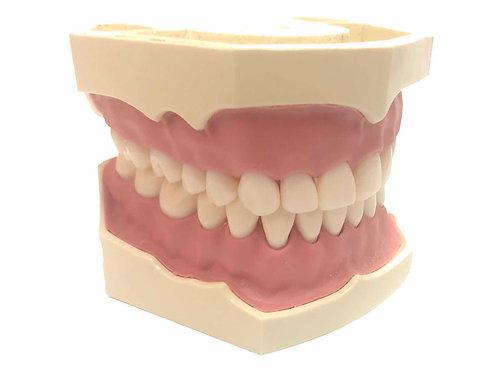 DentoForm AG-3