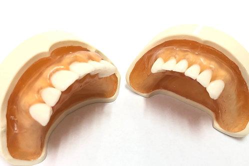 DentoForm N5F-t