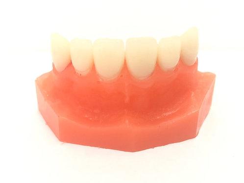 DentoForm F6