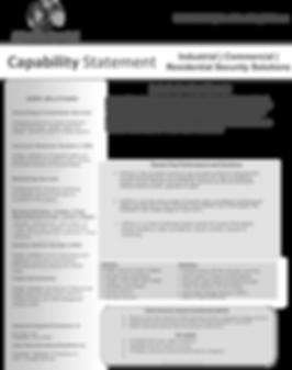AIIPSLLC SecurityCapabilityStatement.png