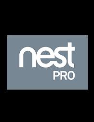 Nest Pro Logo
