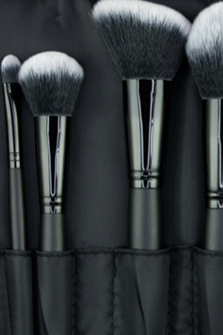 PROFESSIONAL BRUSH SET