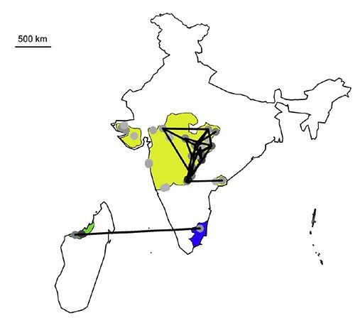 india faunal similarity.jpg