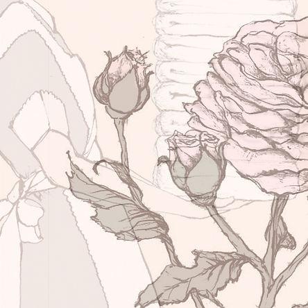 ROSE-Cover-4_edited.jpg