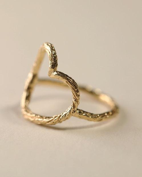 Linear Motif Ring