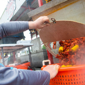 David Dauterive helps pour out a fresh pot of crawfish from Clesi's to serve at the seventh-annual Jamie Galloway block party outside of the Maple Leaf Bar on March 31, 2019. This photo was made for the Uptown Messenger.