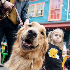 """Dat Dog hosted the """"Anti-LIE"""" Block Party outside of their Magazine street location where there was music, a referee dunk tank and they played the Saints' 2010 Super Bowl victory on loop. This photo was made for the Uptown Messenger."""