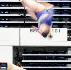 George Washington University Gymnastics Meet, Charles E. Smith Center, February 23, 2020