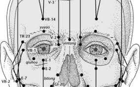Les pathologies oculaires en Energétique Traditionnelle Chinoise
