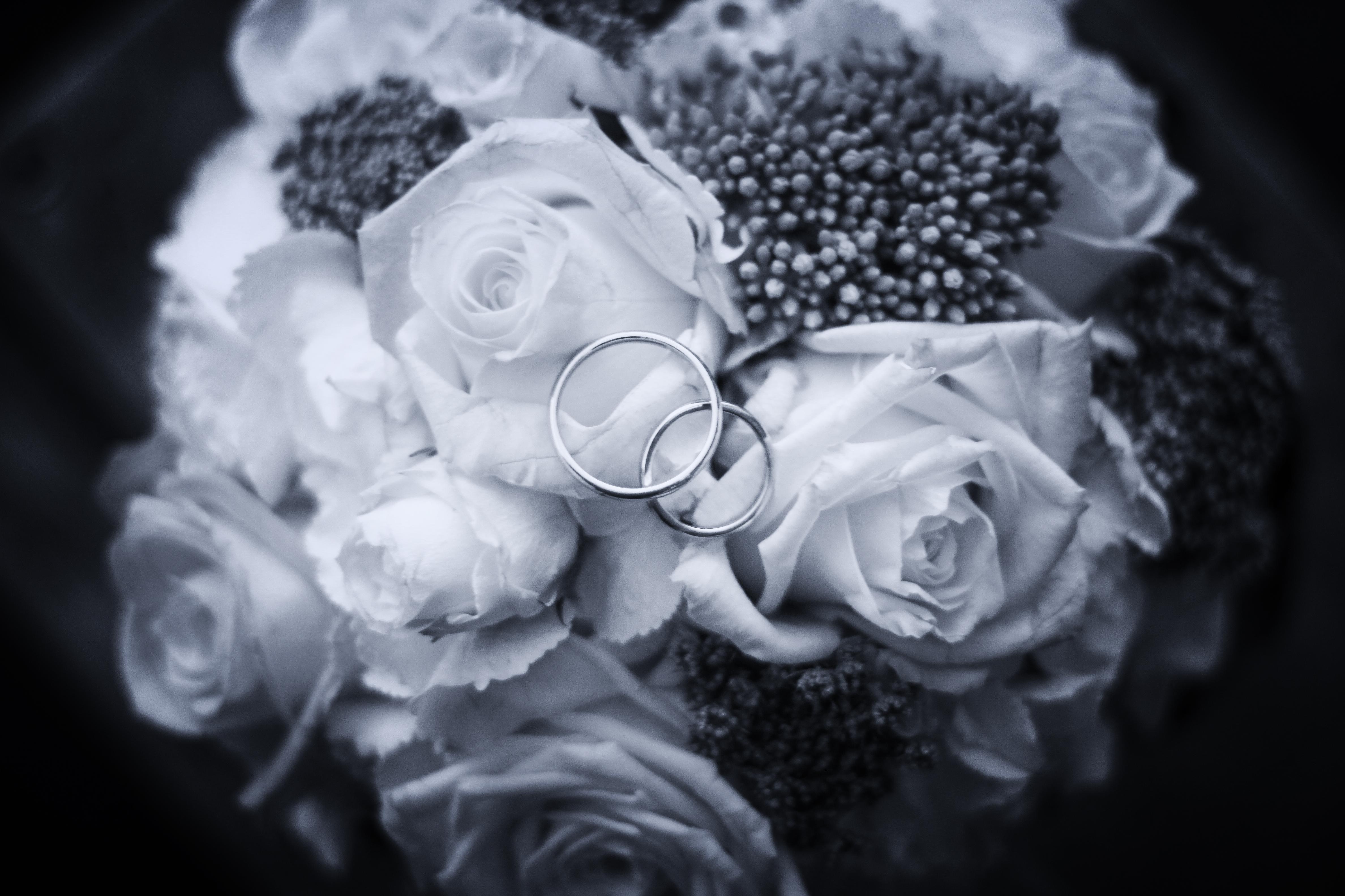 Weddingrings Hochzeitsringe Eheringe