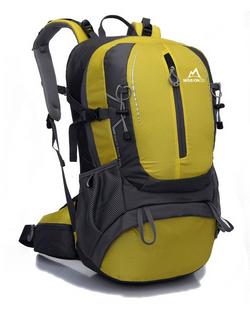 Sequoia3000-yellow