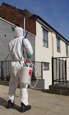 Eradicating a wasp nest in Birmingham