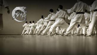 Birmingham Martial Arts Centre