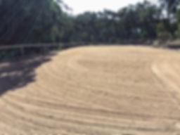 sand arena.jpg