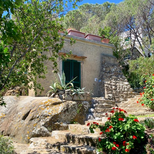 Pardini's Hermitage.