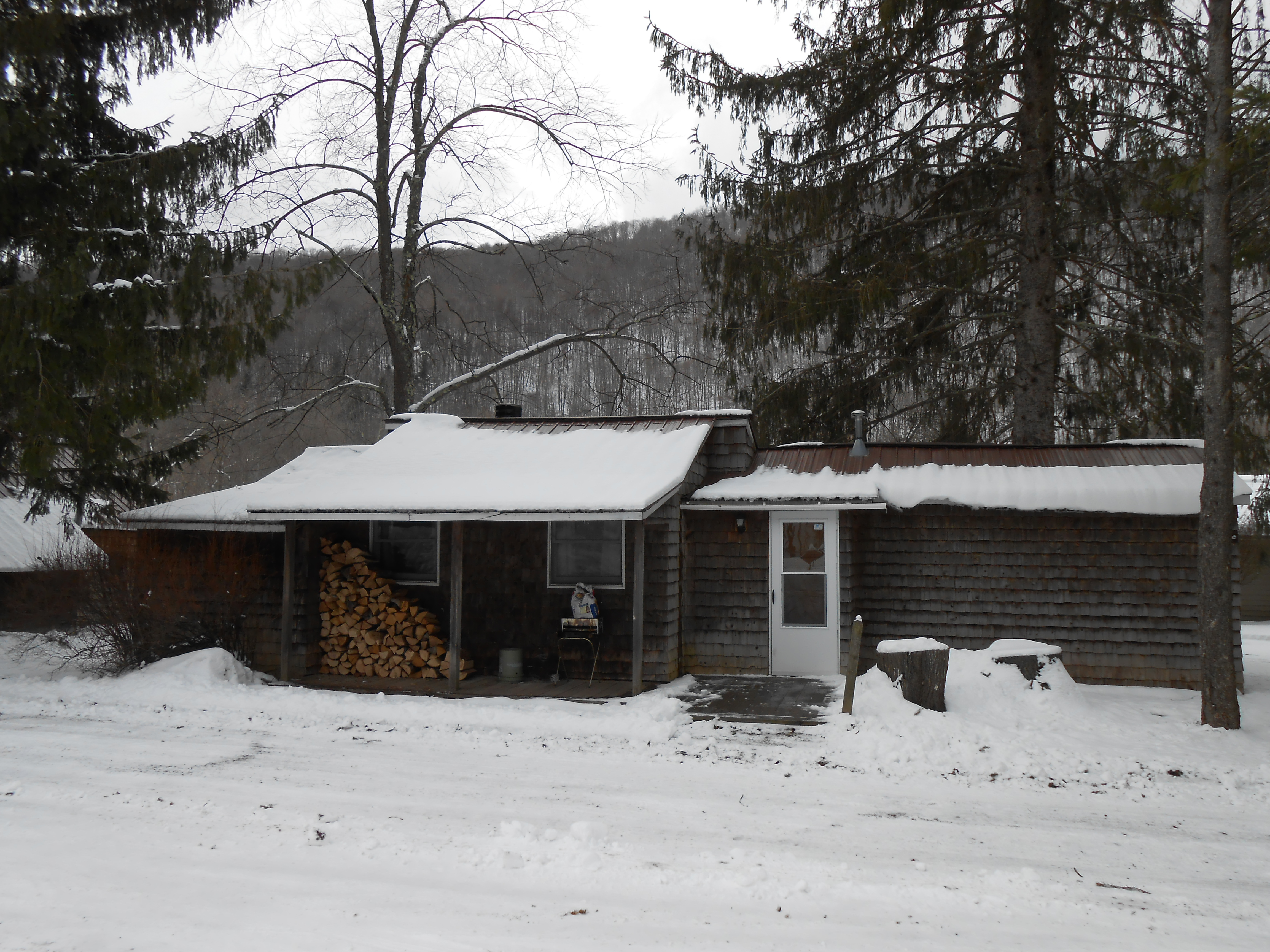 Cabin 1 in Winter