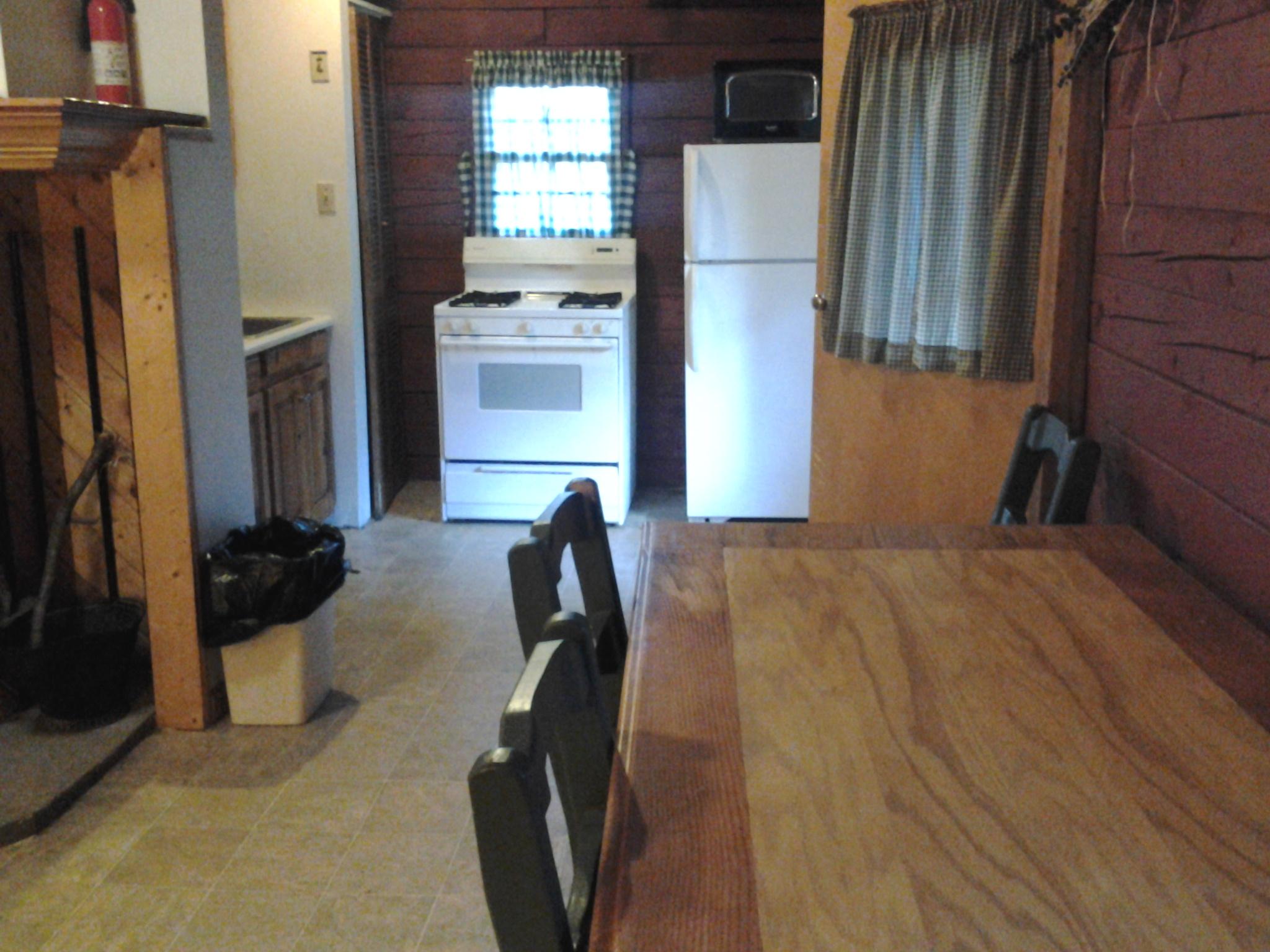 Kitchen in Catskills log cabin