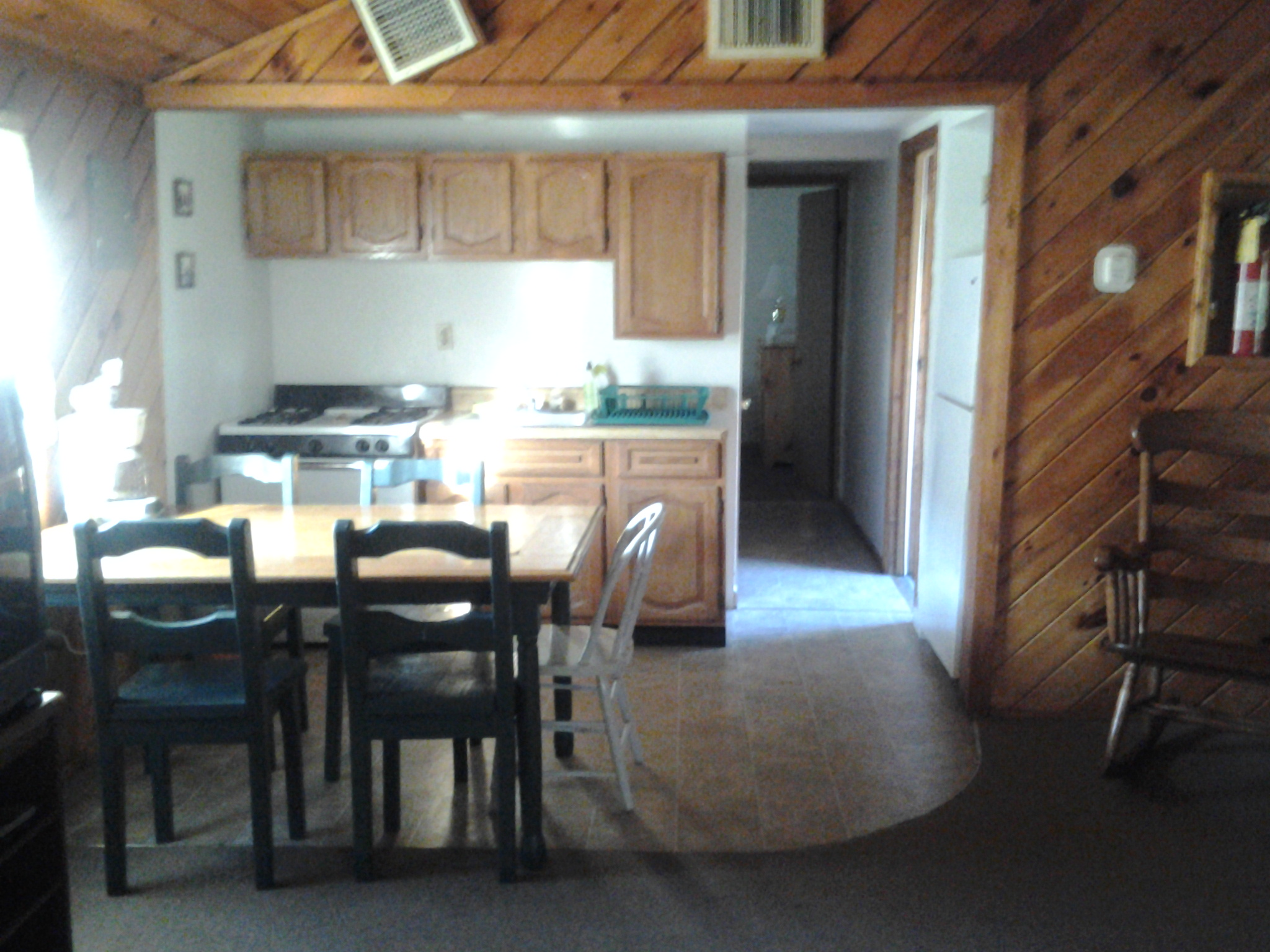Cabin Rental 1 Kitchen