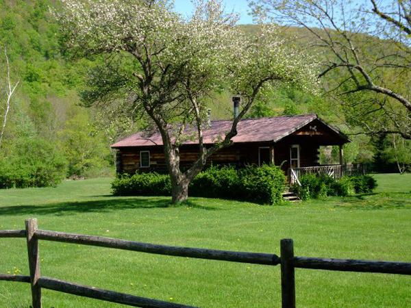 Cabin 6 Vacation Rental
